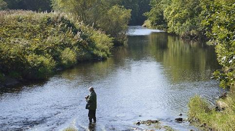 Im klaren Bachwasser auf Raubfische angeln, sind natürliche Dekors die Favoriten.