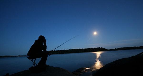 Der Zander ist ein nachtaktiver Fisch der extrem vorsichtig auf Köder beißt.